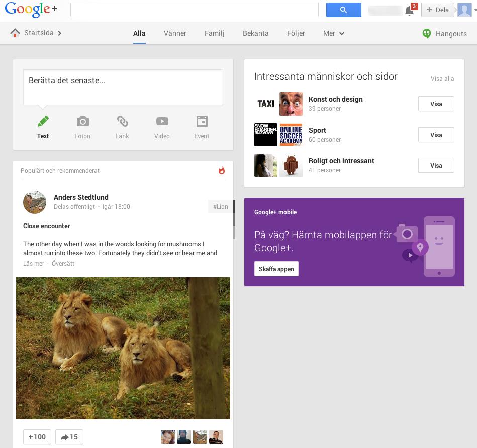 Din profil på Google+